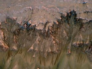 Probe finds liquid water clues on Mars