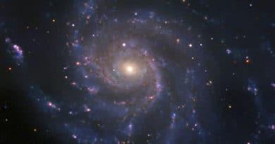 The supernova in M101