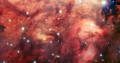 The heart of the Omega Nebula (ESO)