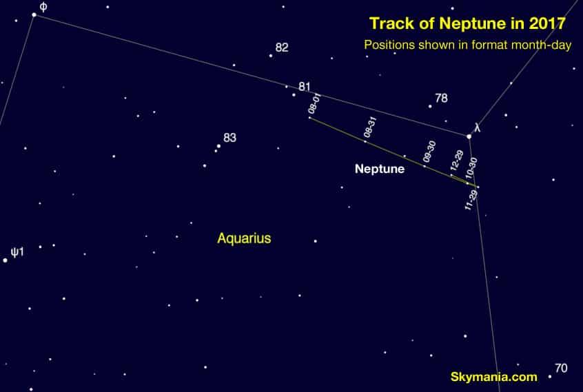 Neptune's track