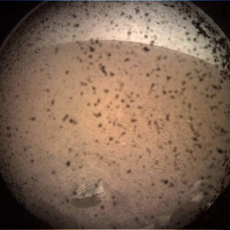 First view from InSight